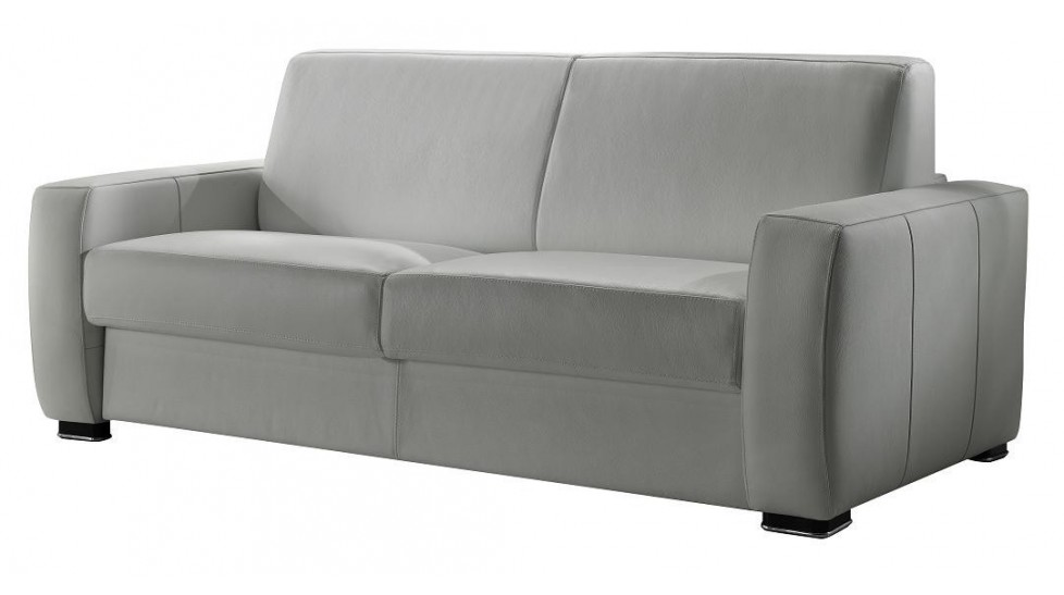Canap lit en cuir 2 places couchage 120 cm tarif usine for Canape lit en cuir